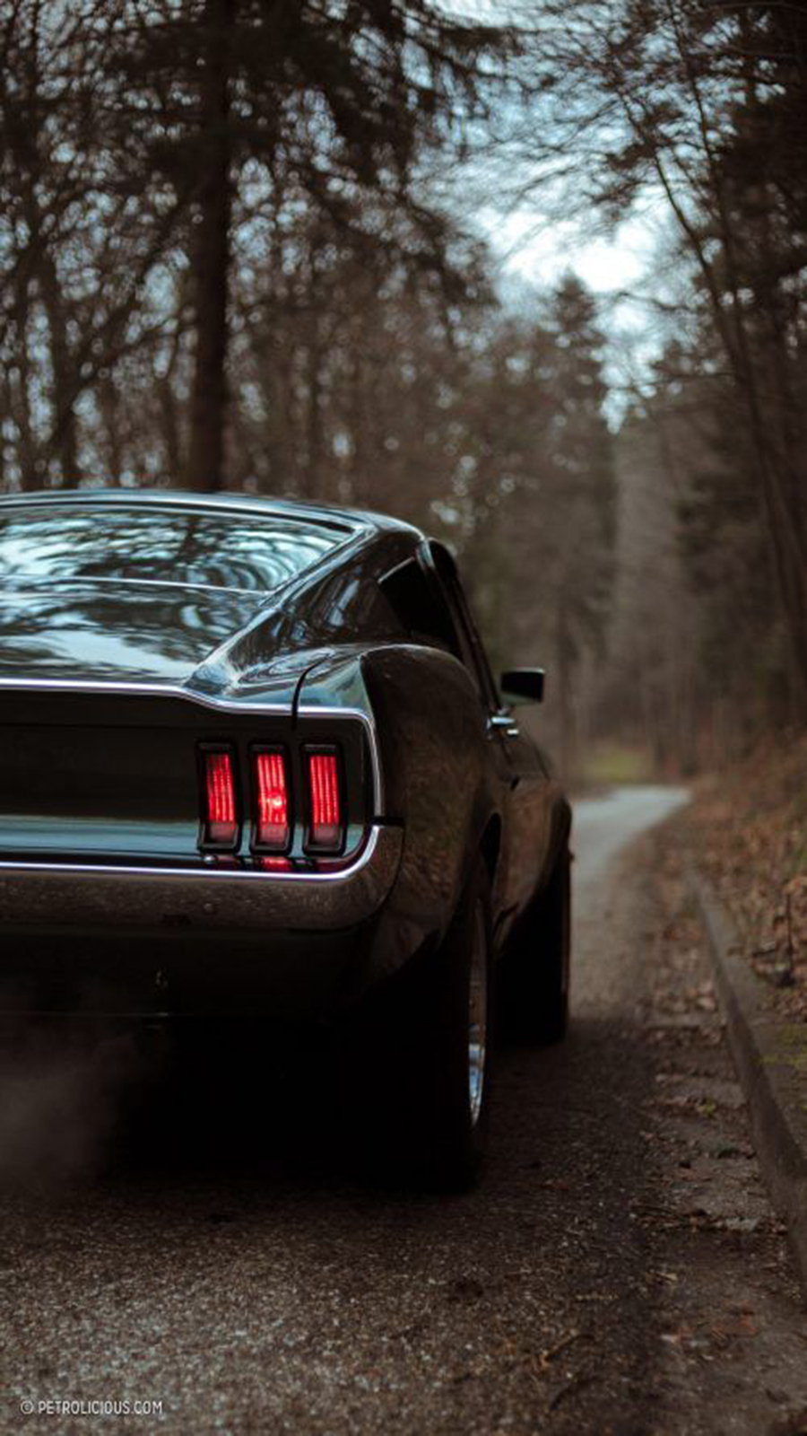 Back View Supercars HD Wallpapers Download free Bestwallpapers.net (6)