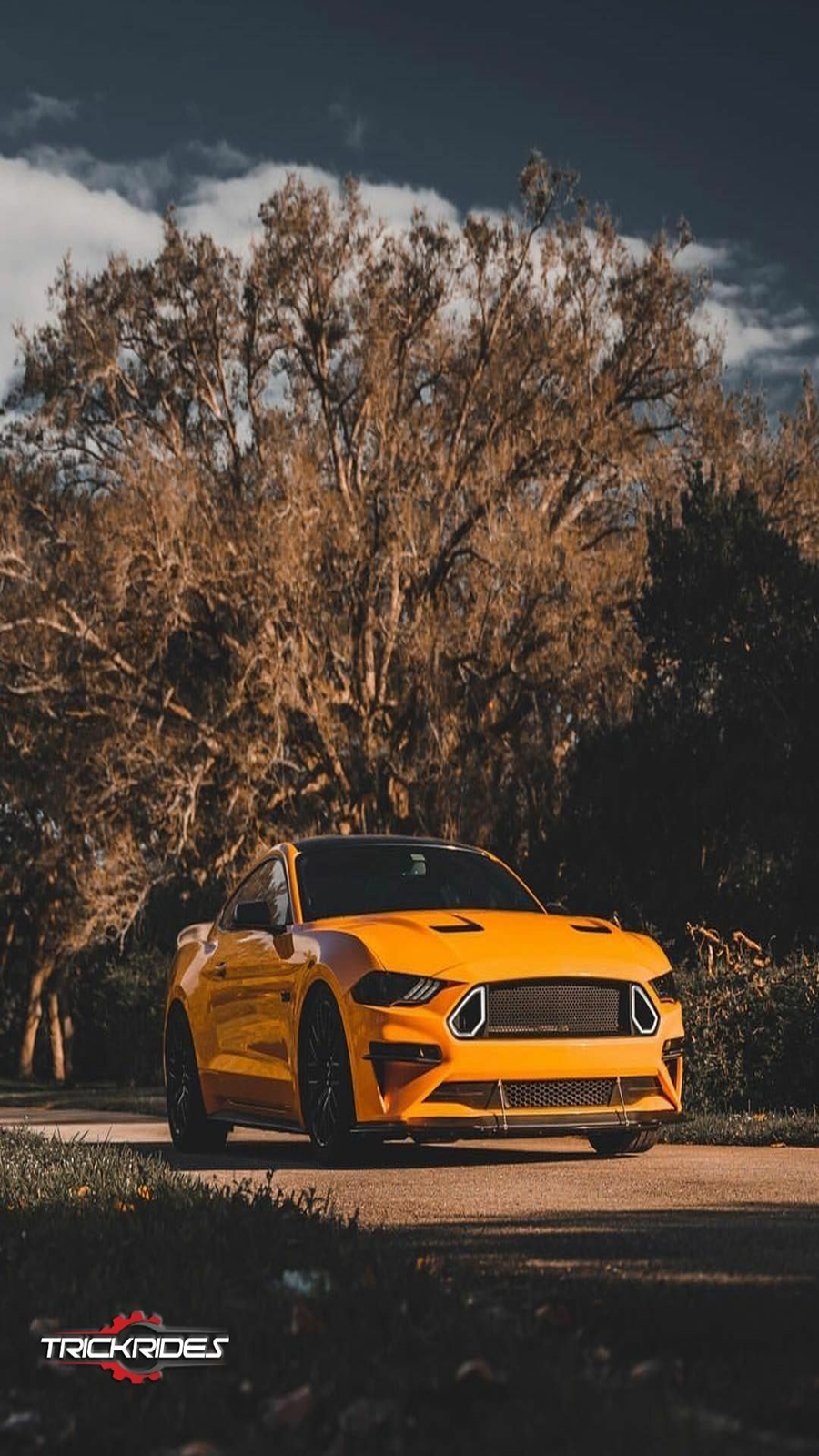 Super Car Wallpapers for Mobile Free Download – Best Wallpapers (54)