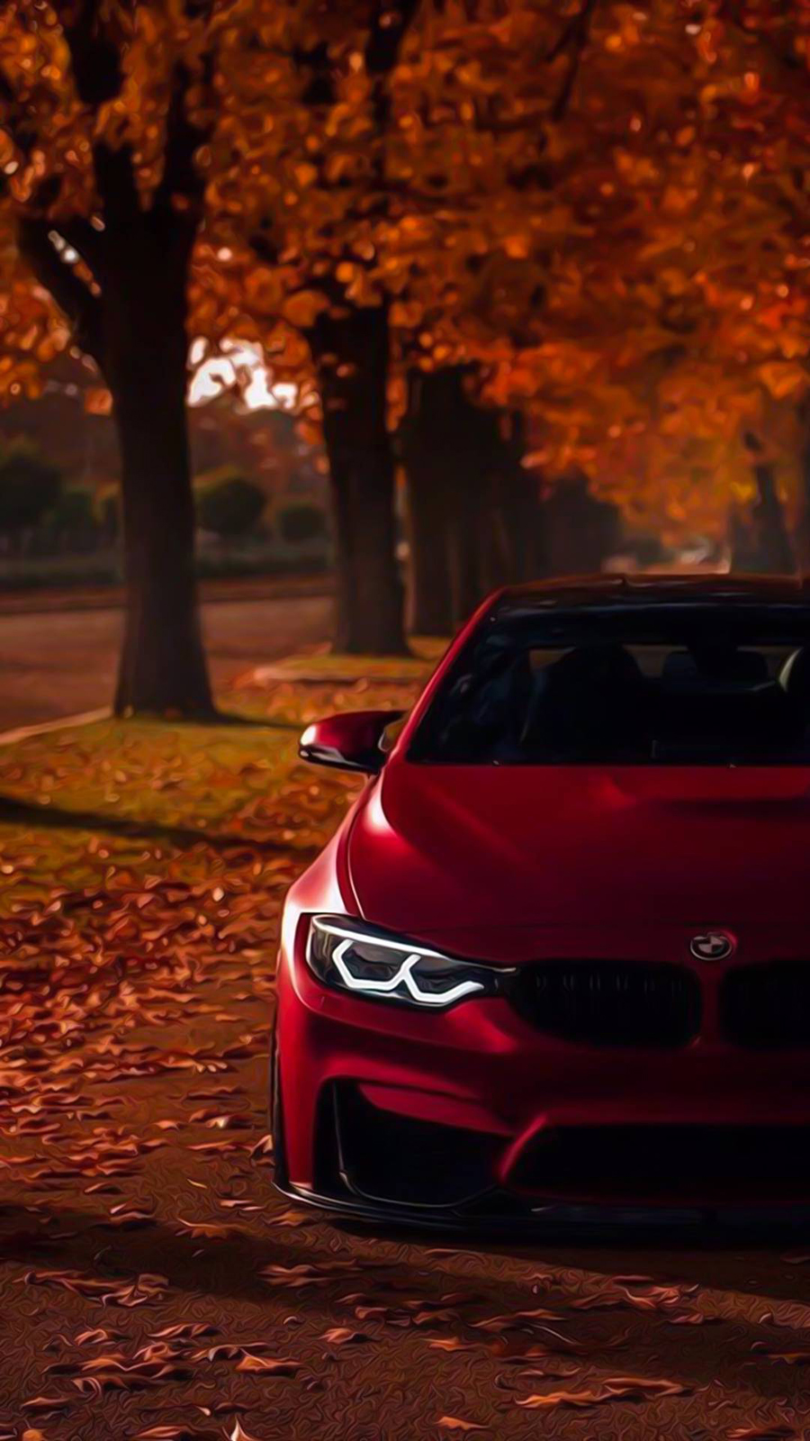 red bmw m3 car super hd wallpapers