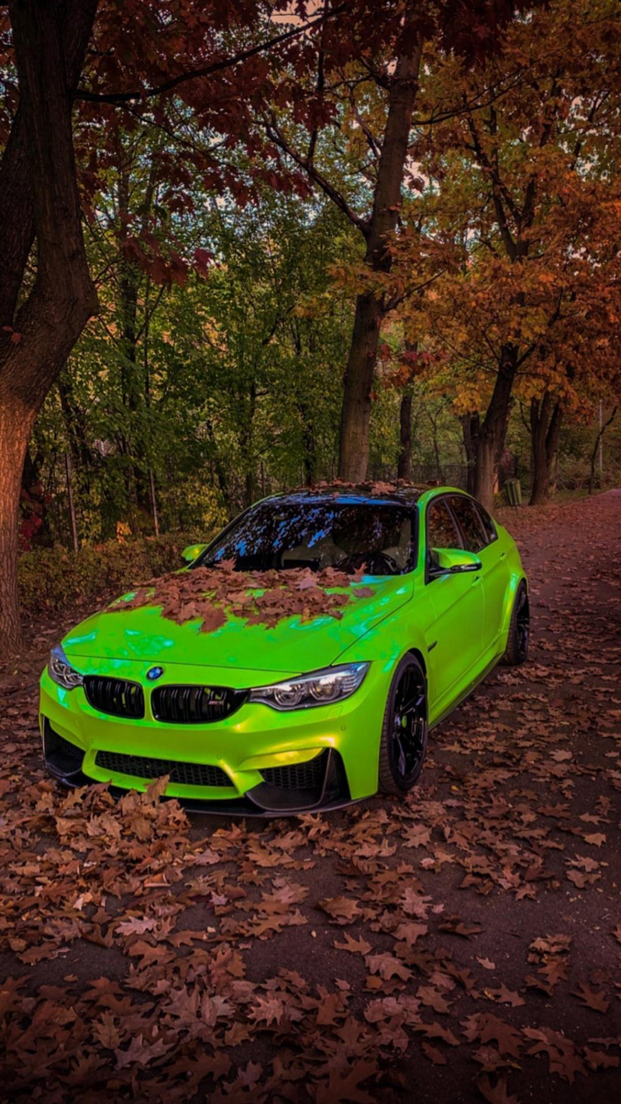 BMW Wallpaper – Most Popular Car Wallpapers Free Download