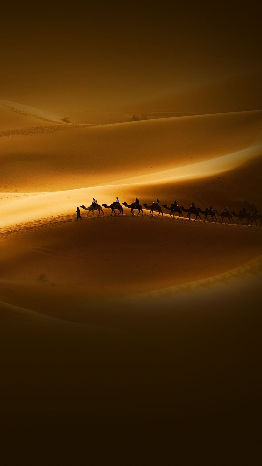 Desert Sunset Riders Camels Wallpapers Free Download