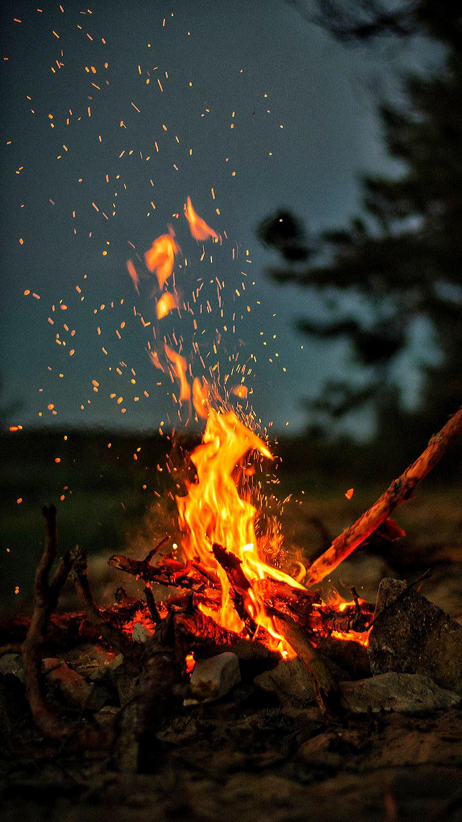 Nature & Fire Wallpapers Free Download For Your Phone