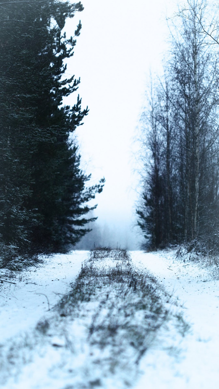 Snowy Road Wallpaper – Phone Road Wallpapers Free Download