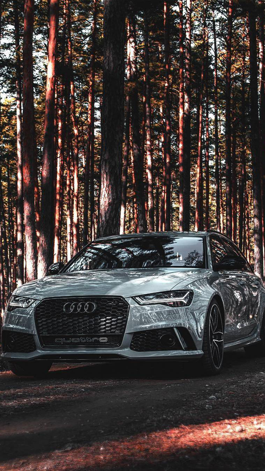 Audi RS6 Sports Car Free Wallpapers Now Download