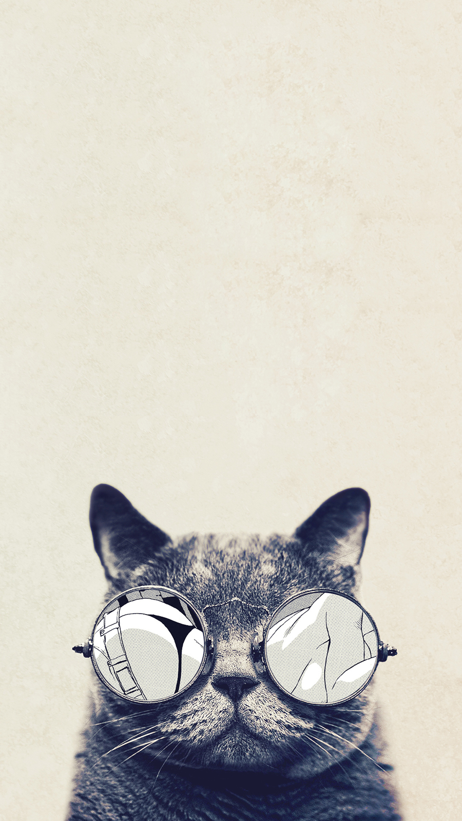 Cool Cat Glasses HD Wallpapers Free Download