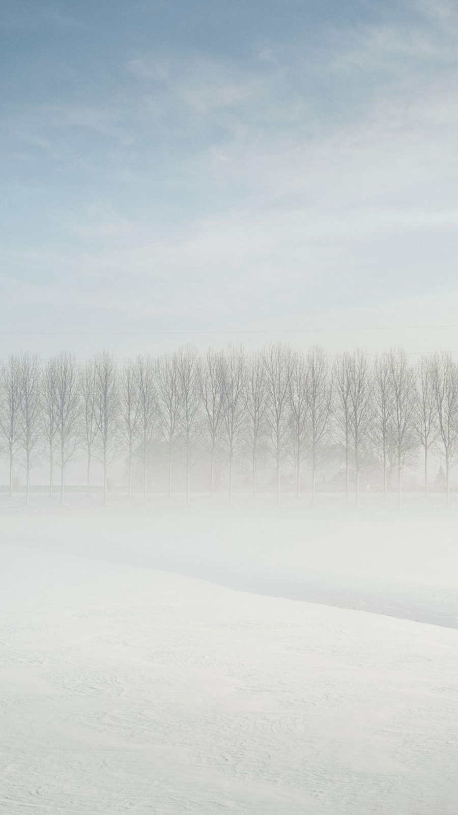 Foggy Forest Distance Snow Wallpapers Free Download For Mobile & Desktop