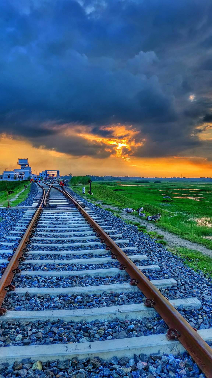Rail Line, Sunset Wallpapers Free Download For Your Device