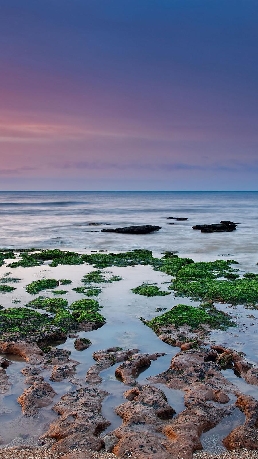 Reefs, Moss, Sea, Rain, Algae Full HD Wallpapers Now Download