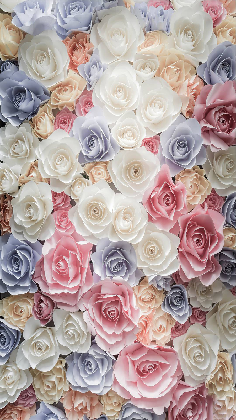 Romantic Roses Wallpapers Now Download