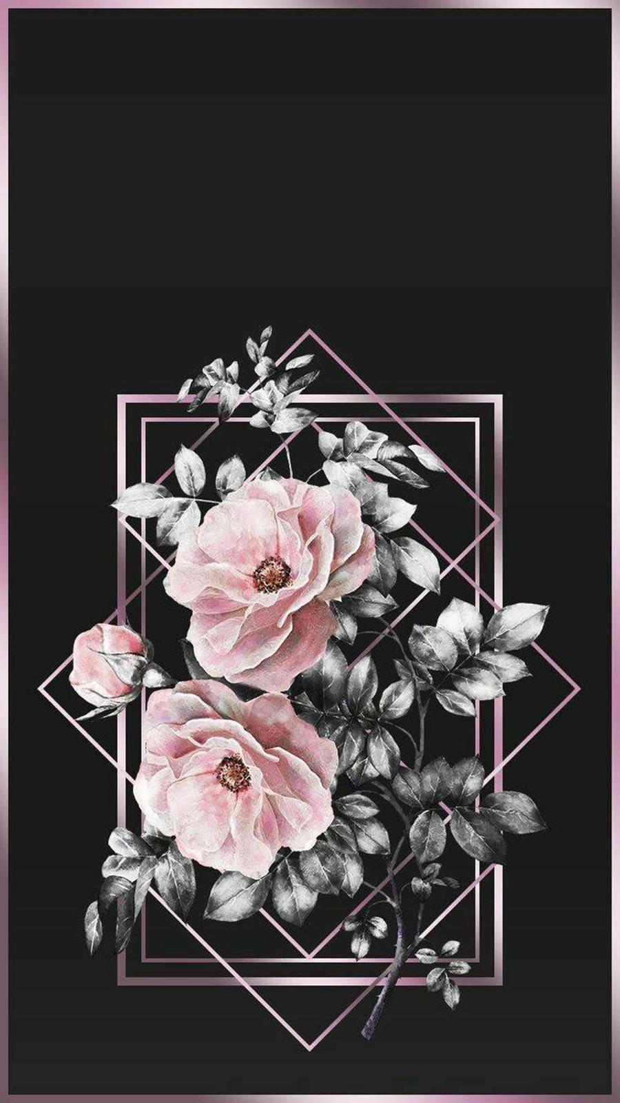 Rose & Black 4K Free Wallpapers Now Download