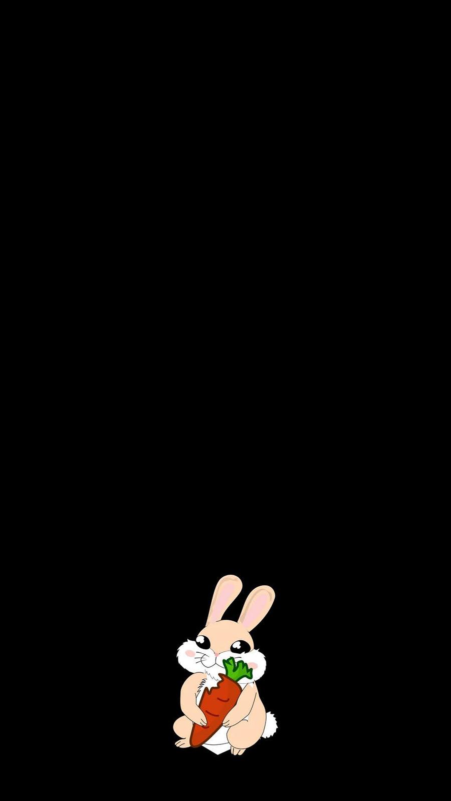 Cute Rabbit Wallpapers Free Download