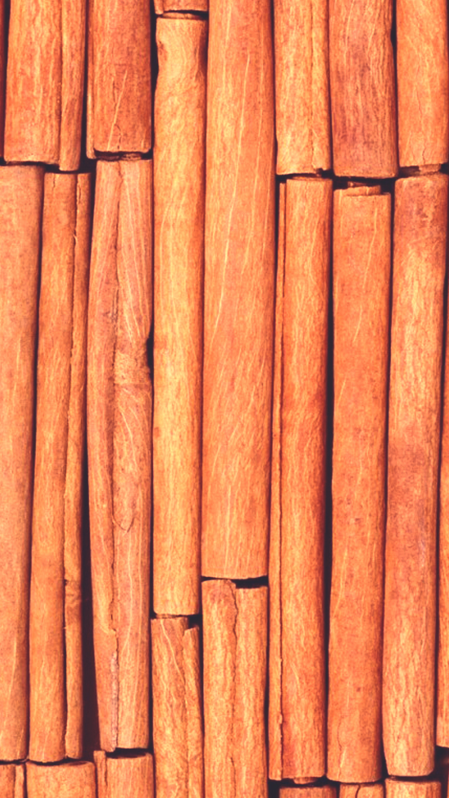 Bamboo Wallpapers Free Download