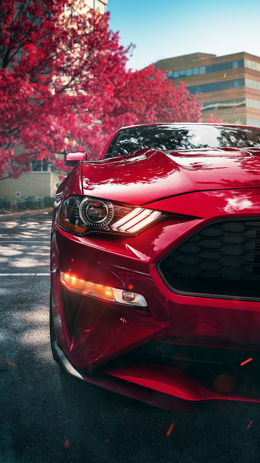 Red Ford Mustang HD Wallpapers Free Download