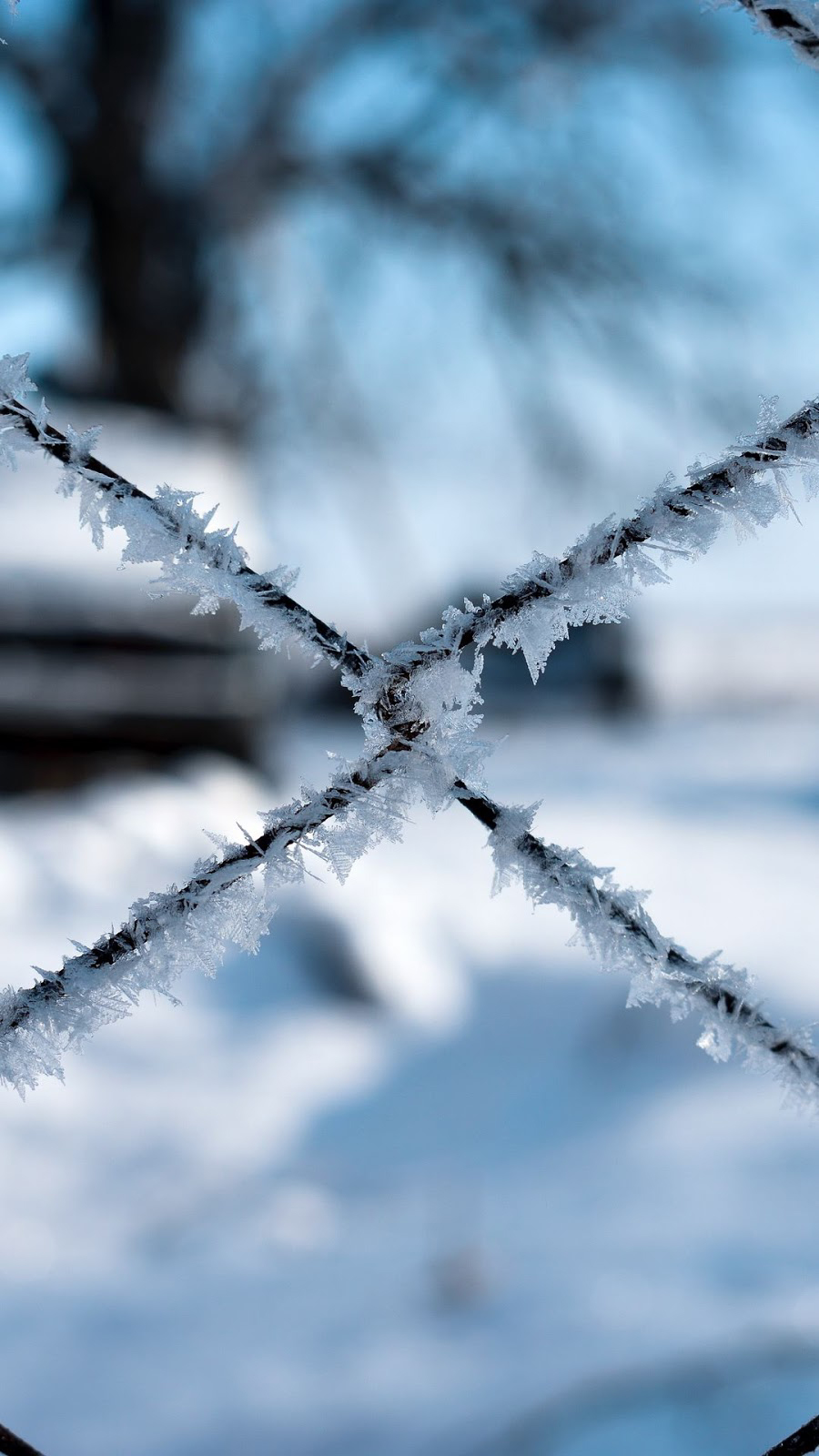 Best Winter Themed Wallpapers Free Download