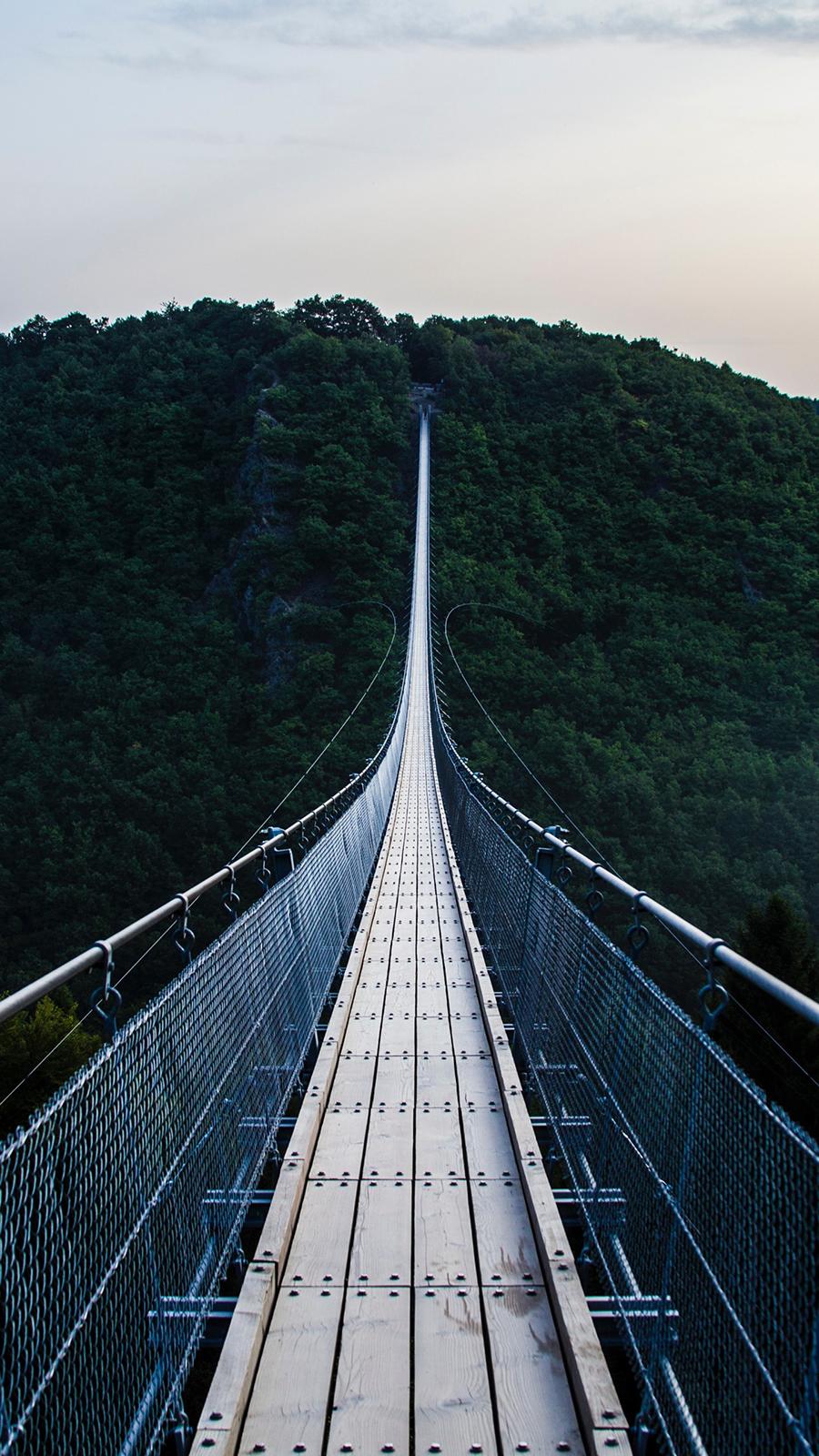 Bridge Trees Hanging Free Wallpapers Download