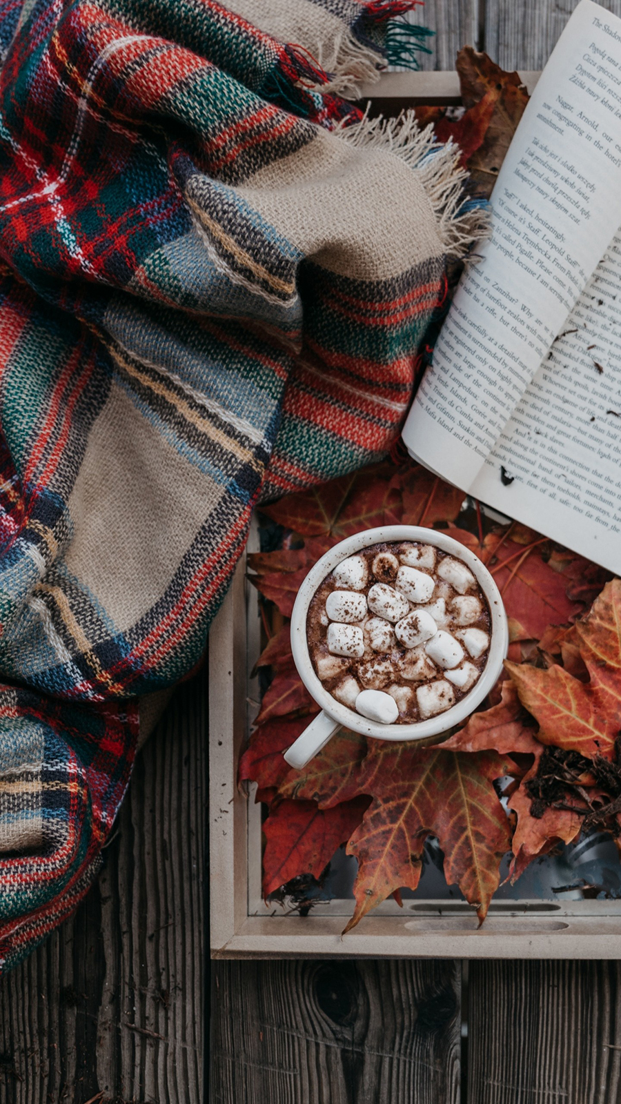Cocoa Marshmallow Autumn Wallpapers Free Download
