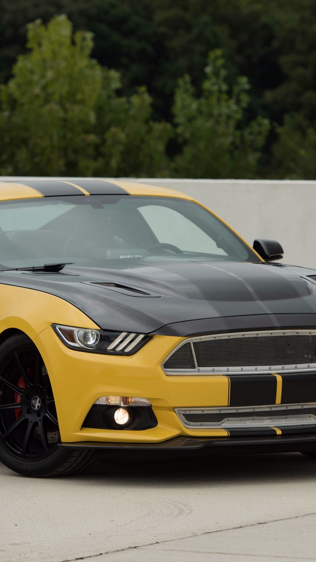 Ford Mustang Shelby GT Wallpapers Free Download