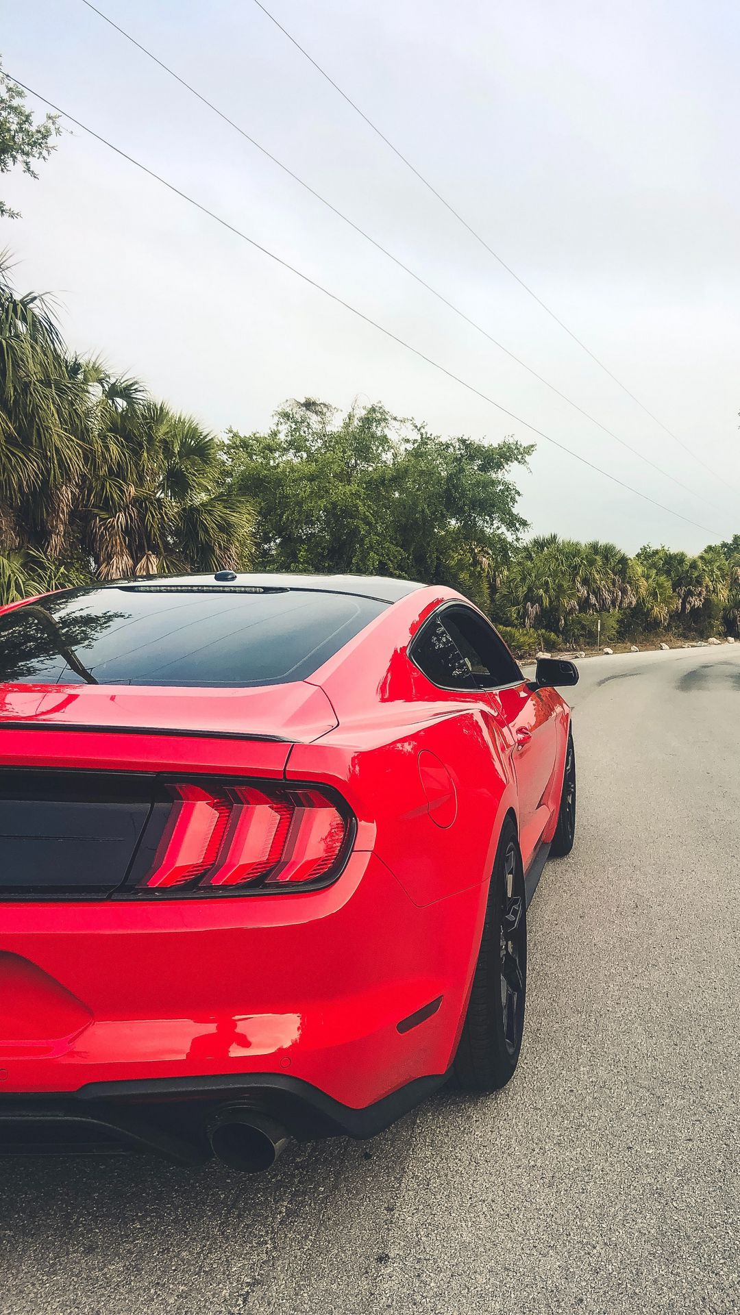 Red Ford Mustang Wallpapers Free Download