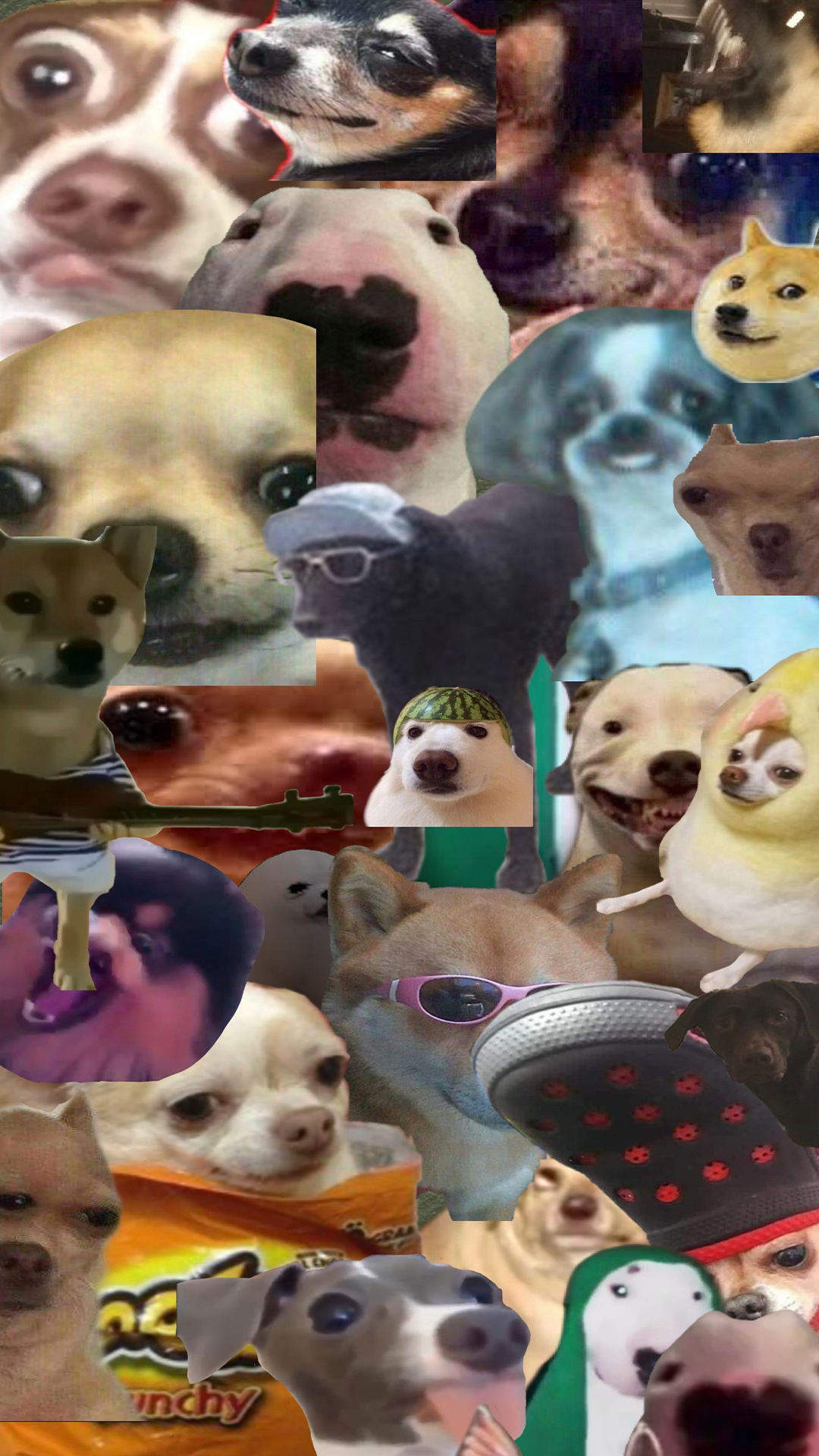 All Dog Meme Wallpapers Free Download