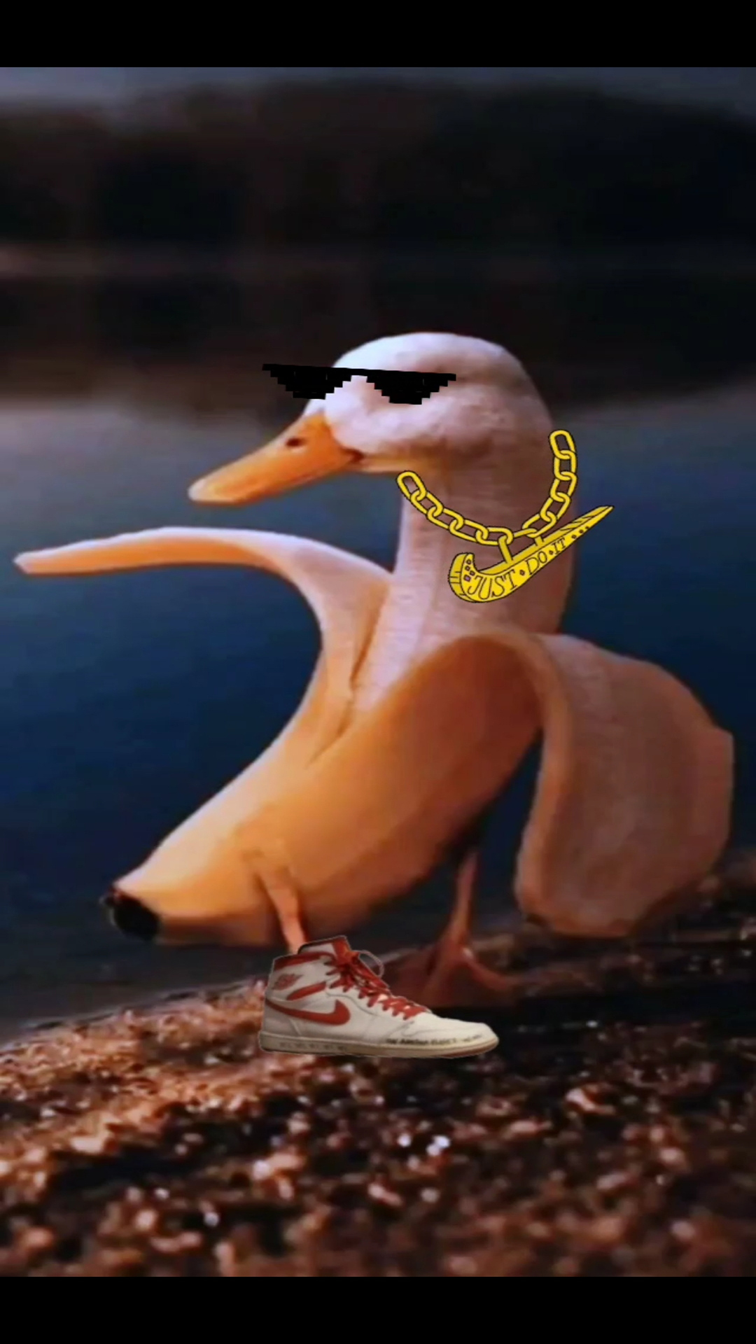Banna Duck Memes Wallpapers Free Download
